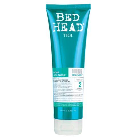 Tigi Urban Antidotes Recovery Shampoo 250ml - Champù de Reestructuración nivel 2