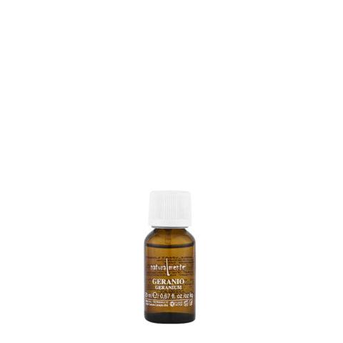 Naturalmente Essential oil Geranium 20ml - Aceite esencial de Geranio
