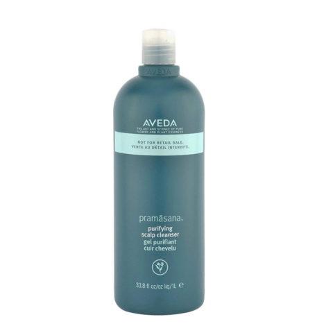 Aveda Haircare Pramasana Purifying Scalp Cleanser 1000ml - limpiador para el cuero cabeludo