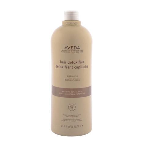 Aveda Hair Detoxifier Shampoo 1000ml - champù
