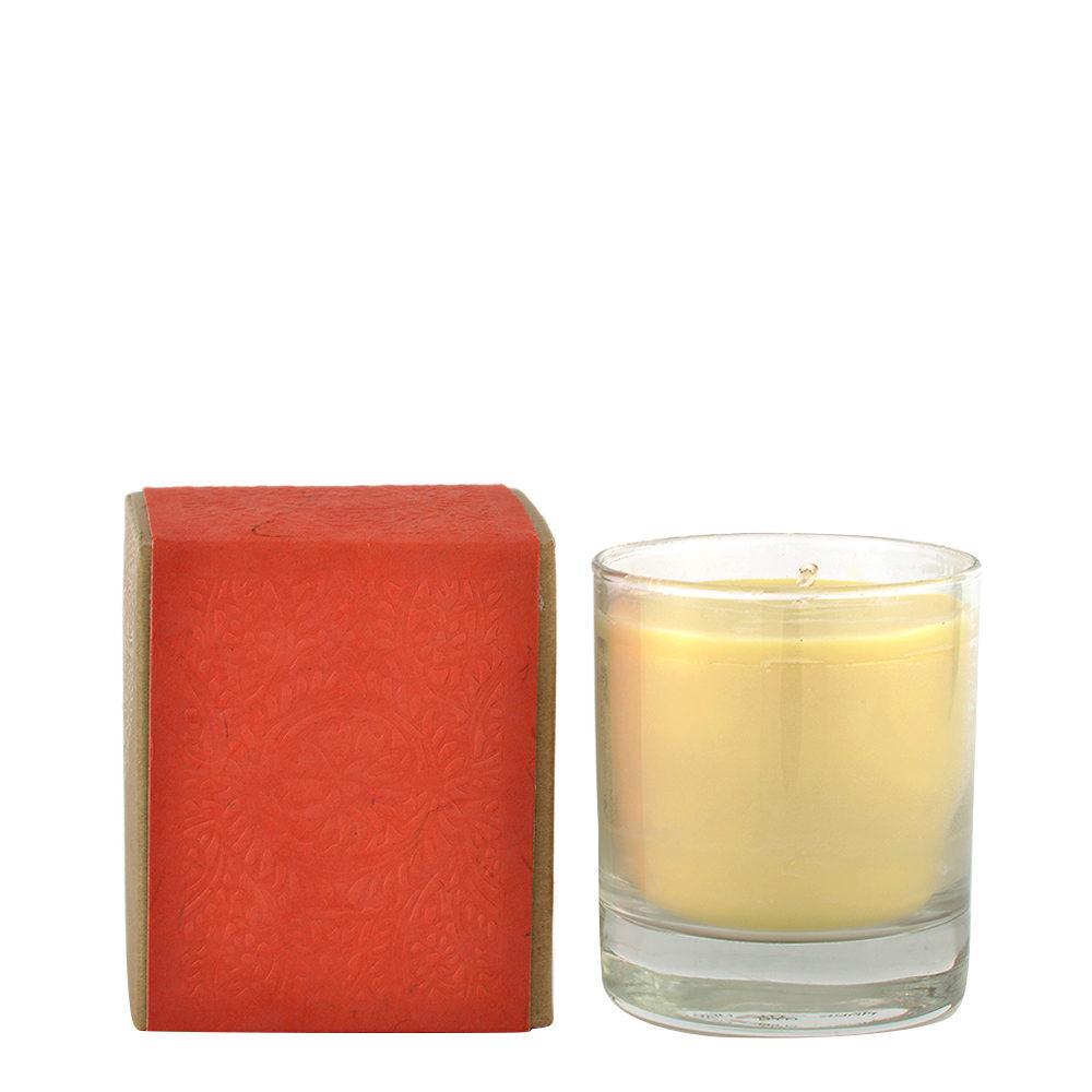 Aveda Comfort & Light Candle - vela de soja