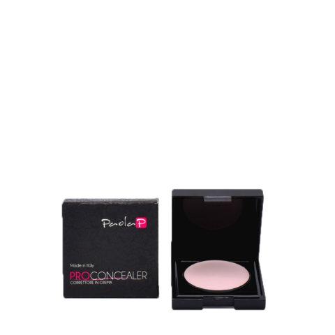 Paola P 07 Pro Concealer Corrector en Crema 3gr