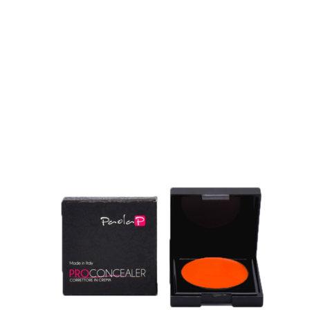 Paola P 09 Pro Concealer Corrector en Crema 3 gr
